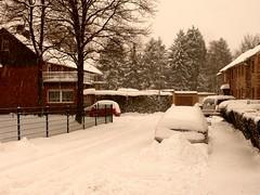 Weie Weihnachten (acmelucky777 (so busy right now...)) Tags: schnee winter germany deutschland panasonic nrw weihnacht dmc 2010 westfalen fz50 weise nordrhein alsdorf 1420677