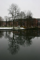 Trees (micromax) Tags: england snow tree water reflections river bedford unitedkingdom bedfordshire east rivergreatouse