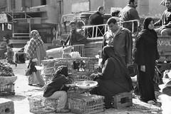 Slum streets (Xalira) Tags: children egypt cairo luxor slum pharaon misr zabbalin pyramydes
