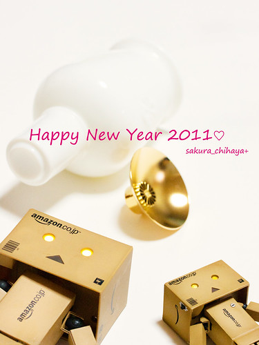 12444 - Happy New Year 2011♡