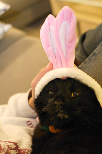 Bunny Durif