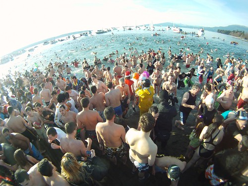Polar Bear Swim 2011
