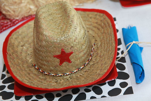 5326328886 22255175e6 Yee Haw! Barnyard Party Ideas