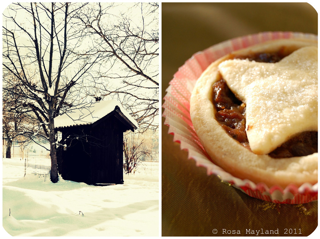 Mince Pies Picnik collage 1 bis
