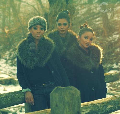 woods_0340 copy