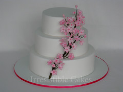 Cherry Blossom (Irresistible Cakes) Tags: pink wedding white flower cake cherry three blossom weddingcake round cherryblossom tier