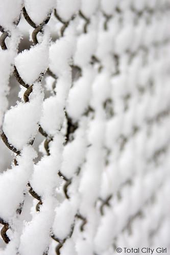 snow0107-8