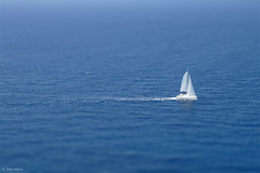 Miniature - 4 (Ben Heine) Tags: ocean voyage travel blue light sea summer wallpaper mer inspiration art colors speed project fun photography hope freedom boat miniature cool scenery holidays energy colorful exposure blauw dof image pov lumire quality space air small arts picture fast simulation fresh minimal sharp explore oxygen greece libert enjoy license sail series conceptual freetime bateau copyrights paysage discovery far loin libre mykonos imagery ecosystem waterscape workflow luminosity tiltshift postprocessing theartistery naviguer digitaltechnology creativecomposition benheine samsungimaging nx10 benheinecom