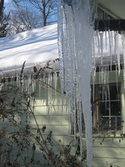 Ice Sickles (katecat1) Tags: icesickles