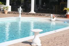 Montego Bay Jamaica Richmond Hill Inn (aruam) Tags: homes sea bird fruit bay inn hill richmond jamaica caribbean stores selling humming montego
