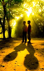 (Md. Raihan Kabir) Tags: road morning light shadow sunlight tree love children photo asia village explore photograph dreem frindship