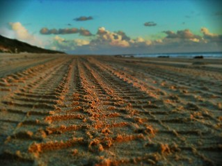 Making tracks #iPhoneography