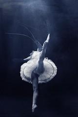 Dancing Fish (Vincenzo Pioggia) Tags: sea ballet fish photoshop dance underwater dancing under manipulation creation lobster pioggia ravenna swordfish vincenzo