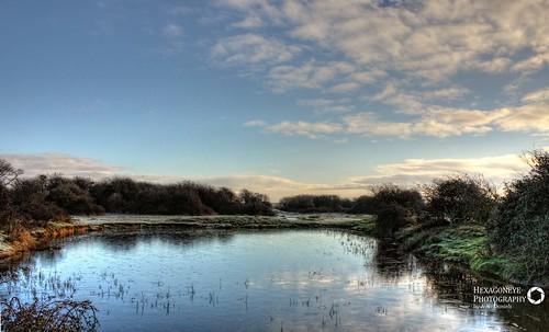 Farlington Frozen Pond