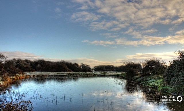 Farlington Frozen Pond