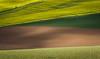 agricultural pattern (bernd obervossbeck) Tags: light field licht pattern colours landwirtschaft perspective feld felder fields agriculture muster perspektive farben sauerland canonef7020014lusm