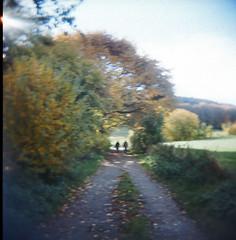 Autumn III (Leah H.) Tags: autumn trees sky people sun forest holga path 2010