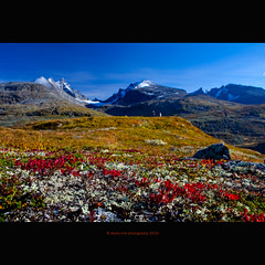good bye autumn! (stella-mia) Tags: blue autumn red mountain mountains fall norway september explore frontpage geiranger 2470mm explored norwegianautumn canon5dmkii