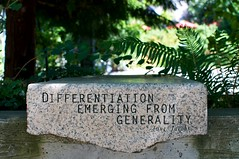 "NCC - ""Differentiation Emerging From Gene..."