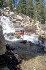 Jewel Thief Crossing a Waterfall