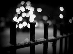 Let it Snow Fence (Kirstin Mckee) Tags: christmas fence christmastree friday fencefriday votingthisweekwastough