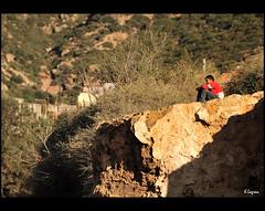 The thinker (Kader Lagraa) Tags: light boy beautiful beauty composition contrast lookin landscape photography algeria photo amazing interesting nikon raw view shot image harbour feel el east bahia charming algerie capture paysage vue share learn 28300mm vr oran lense sense dz kristel thinkin kader whran abdelkader wahren d700 eldjazair wahran dzair djazair lagraa klagraa krishtel