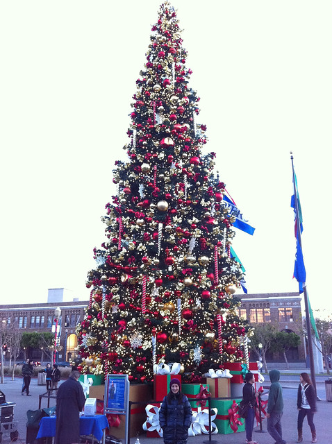 Christmas Tree in Fisherman's Wharf