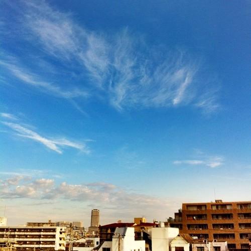 今日の写真 No.97 – 昨日Instagramに投稿した写真(4枚)/iPhone4 + Photo fx