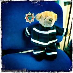 Bear Spotting Adventures October - Fireman Teddy Bear