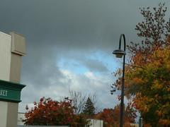 Palo Alto - Spot of Blue 3