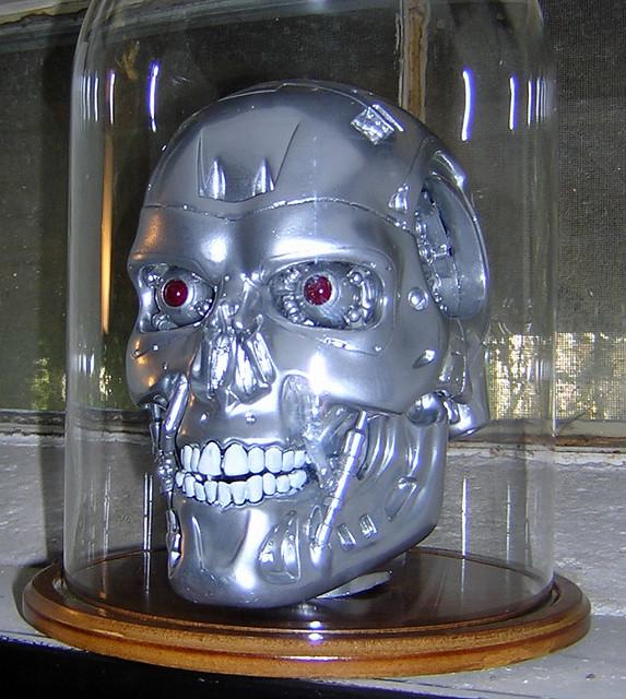 Fin term skull