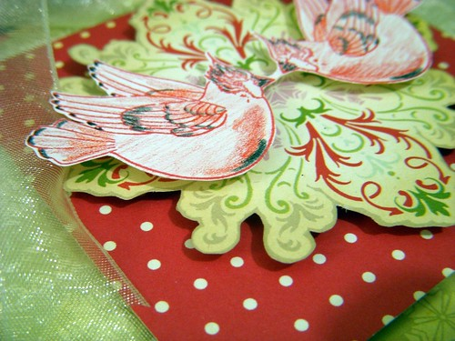 Christmas Birds (close)
