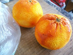 Naked (jazzijava) Tags: christmas xmas food home cooking tangerine fruit bread recipe ginger baking healthy december photos blogger banana gifts blogged blueberries baked fatfree wholewheat nooil xmasgifts nobutter lotsofbananas whatsmellssogood