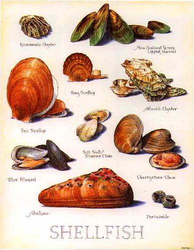 ntreev shellfish