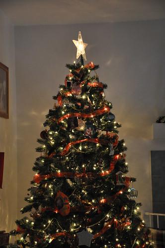 2010-12-24&25 Christmas 294