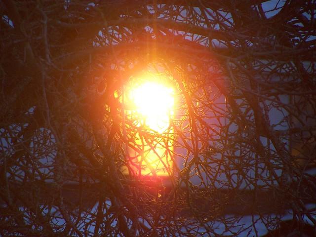 dec 224 Sunset through neighbor's window