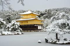 [Free Image] Architecture/Building, Shrine/Temple, Snow, Kinkaku-ji, Japan, Rokuon-ji, Kyoto Prefecture, World Heritage, 201101041900
