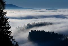 Nebelmeer im Emmental (Anselm11) Tags: afsvrzoomnikkor70200mmf28gifed