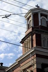 St. Elizabeth & Plane (Josh Koonce) Tags: sky brick church plane canon eos rebel 50mm flying kentucky ky wires louisville stelizabeth 500d ef50mm t1i canoneosrebelt1i