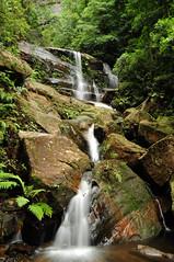 Waterfall, Blue Mountains (Bilby Summerhill) Tags: trees wild fern nature water waterfall nationalpark scenery rocks stream sydney australia bluemountains nsw wilderness