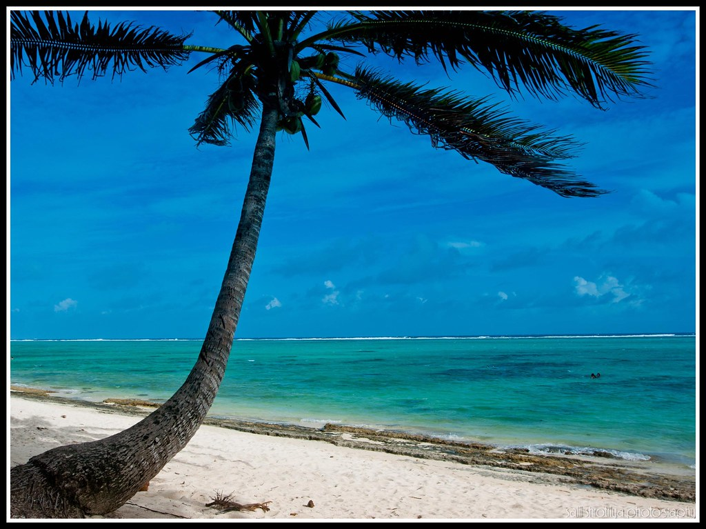 A secluded beach in the Cook Islands