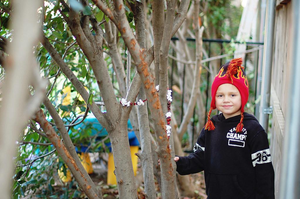 cranberry garland, Peyton, 2010