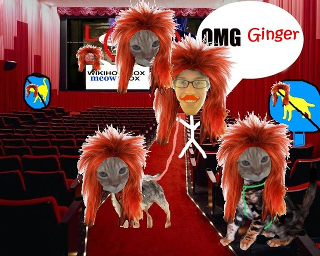 stop the ginger
