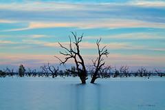 _MG_6261 (Wai Cheong Chan) Tags: pamamaroo lake sunset longexposure menindee andychan andy wai cheong chan