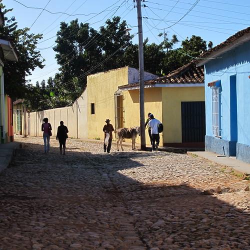Trinidad, Cuba - donkey parking