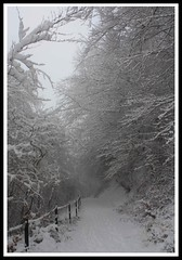 Snowy Lane in the Clydach Gorge (Martyn.Smith.) Tags: trees winter snow cold ice wales canon woodland eos photo flickr frost december snowy snowdrift cymru breconbeacons lane snowfall blizzard cycletrack forests snowscene abergavenny clydach llanellyhill winteryscene 450d clydachgorge winterylandscape winterinwales a4065