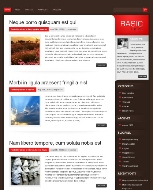 basic-wordpress-theme