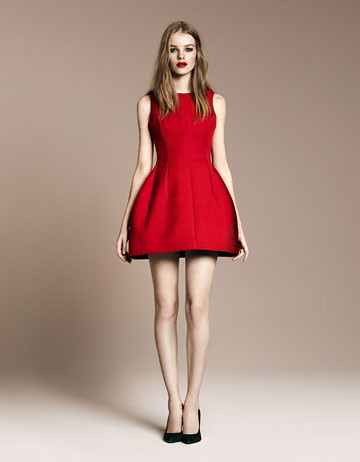 zara tulip dress 2