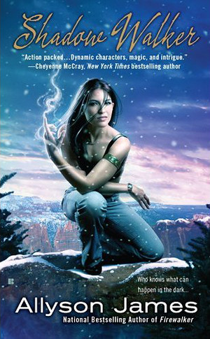 June 7th 2011 by Berkley    Shadow Walker (Stormwalker #3) by Allyson James