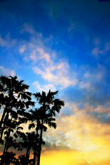Sooth (henpique) Tags: blue trees sky silhouette yellow coconut blend sooth
